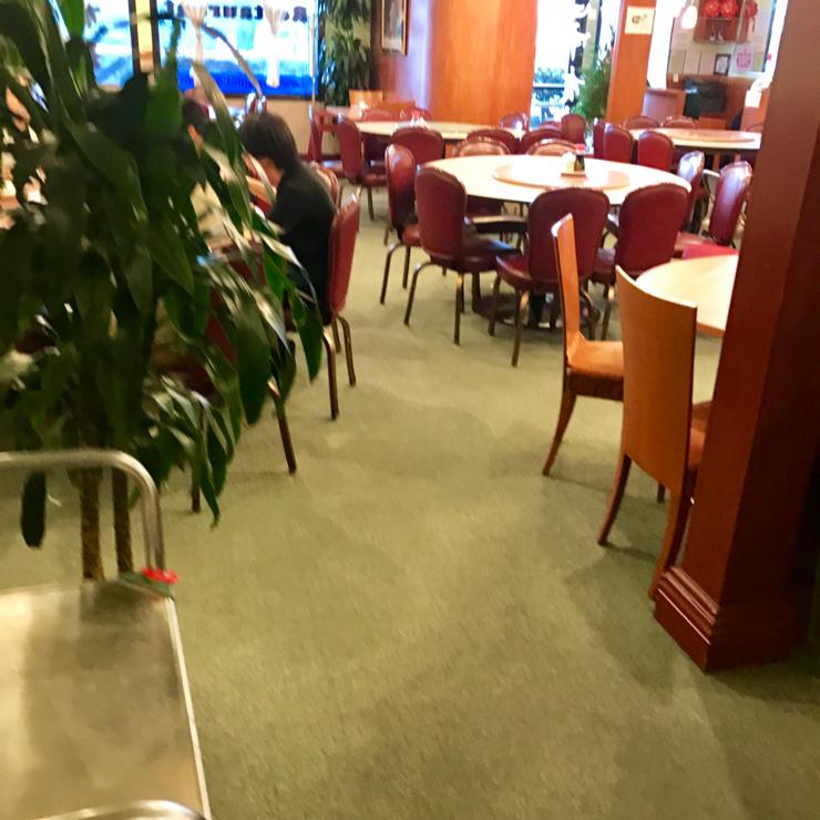 Vegan user review of Veggie Lee in Hayward.