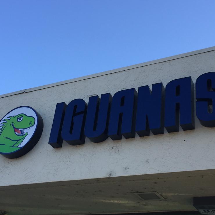 Vegan user review of Iguanas Home Of The Burritozilla in San Jose.
