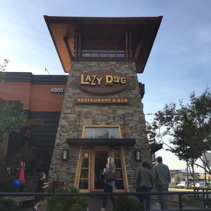 Vegan user review of Lazy Dog Restaurant & Bar in Dublin.