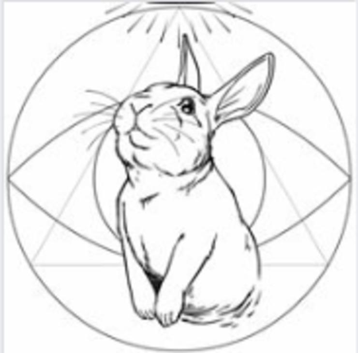 Vegan user review of Rabbits Cafe in Portland.