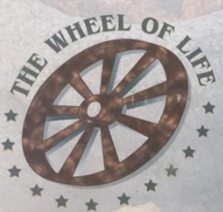 Vegan user review of Wheel of Life in Irvine.