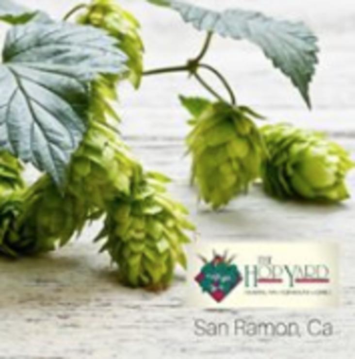 Vegan user review of The Hop Yard American Alehouse & Grill  in San Ramon.