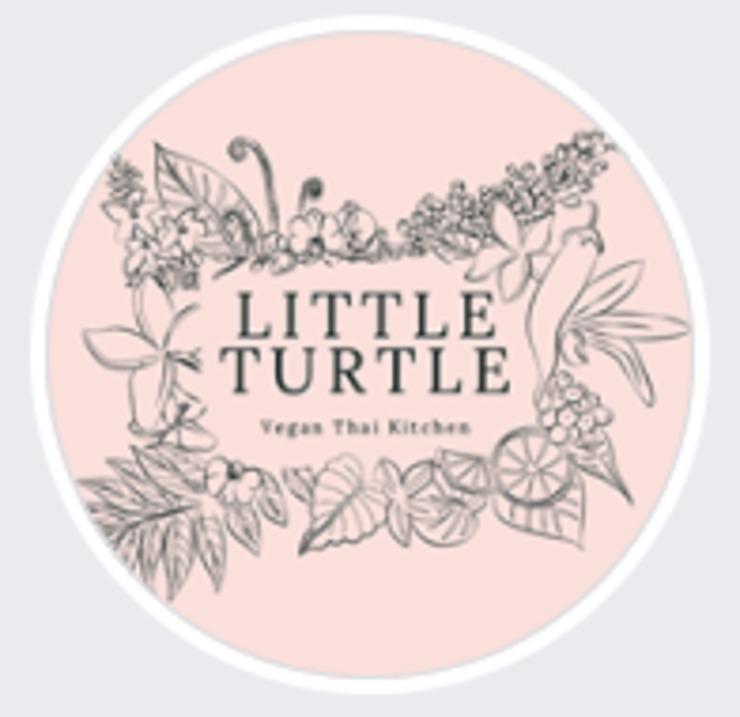 Vegan user review of Little Turtle in Enmore.